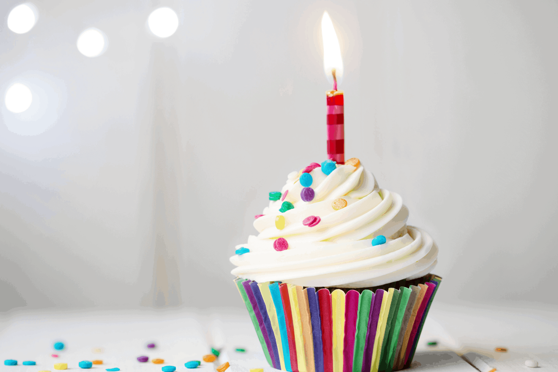 Happy First Birthday to Us! Thoclor Labs Blog